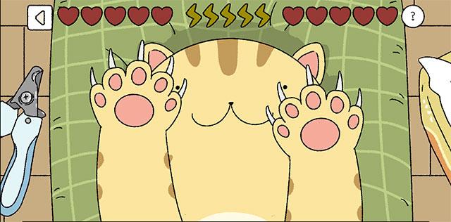 Cắt móng tay cho mèo