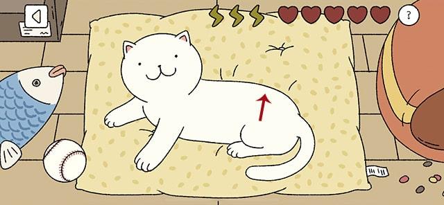 Vuốt ve mèo của bạn