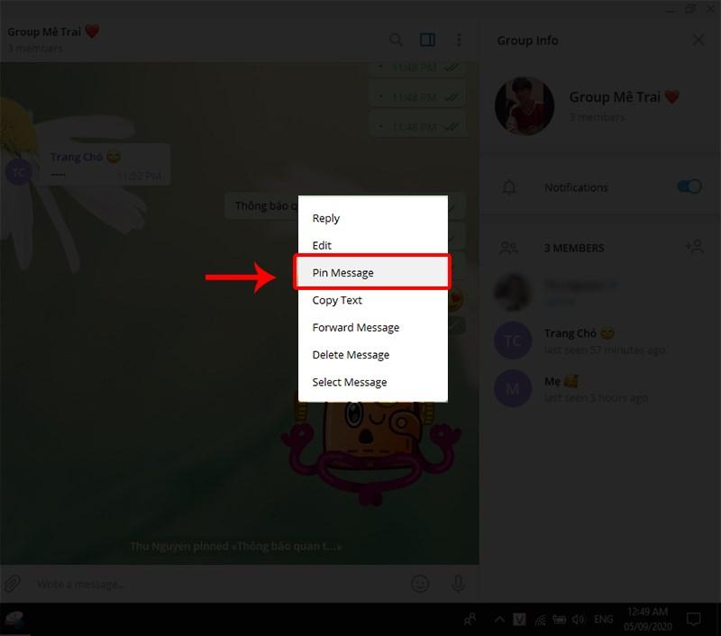 Chọn Pin Message